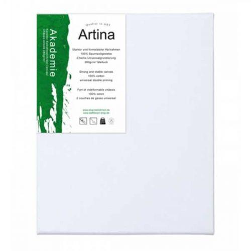 Artina Akademie 100% Памук  30см на 30 см